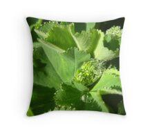 Alchemilla Magic Throw Pillow