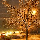 """A Snowy Evening in Knoxville (no.3, from this series)""... prints and products  by © Bob Hall"