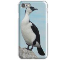 Dominance of the Sea Bird iPhone Case/Skin