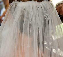 The bridal veil  by AlexKokas
