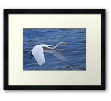 Learning on the Fly Framed Print