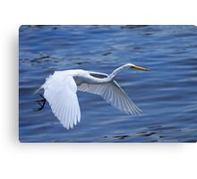 Learning on the Fly Canvas Print