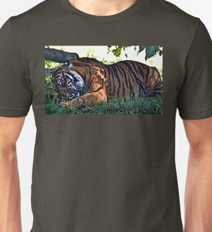 Crunch Unisex T-Shirt