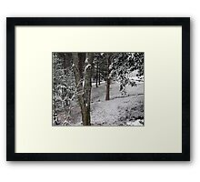 """Winter Woods""... prints and products Framed Print"