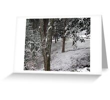"""Winter Woods""... prints and products Greeting Card"