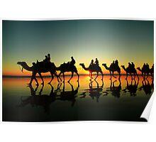 camel line Poster
