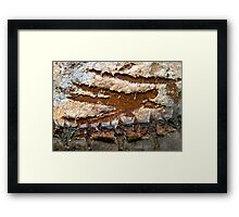 Zorro Abstract Framed Print