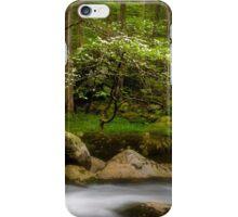 Dogwood Bonsai Tree iPhone Case/Skin