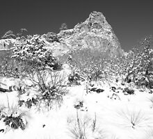 Cathedral Rock by Eric Glaser