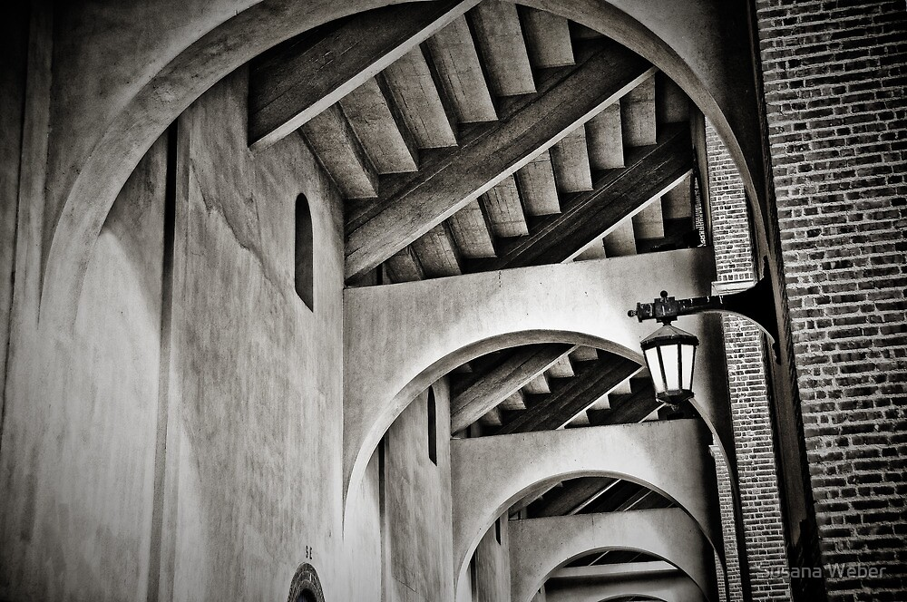 The Ivy arches - Franklin Field at Penn by Susana Weber