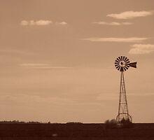 Kansas Red Dirt  by MaryGerken