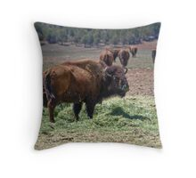 Bison de Escalante Throw Pillow