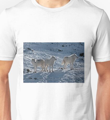 Arctic Wolves In Early Morning Unisex T-Shirt