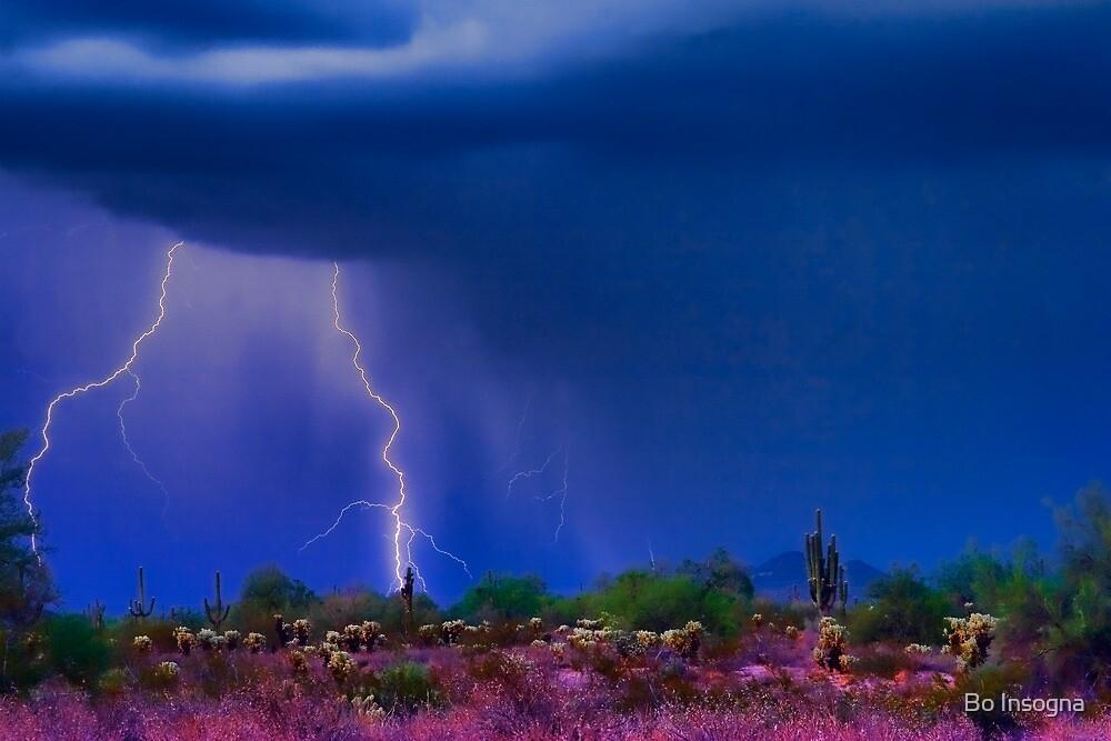 Desert Purple Storm by Bo Insogna