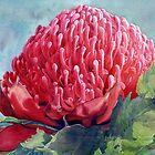 Red Waratah by Joe Cartwright