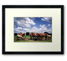 Pennsylvania Work Horses Framed Print