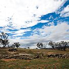 Outback farm by Peter Doré
