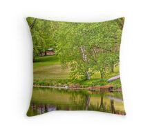 Lake above Crawfish Dam Throw Pillow