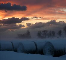 Hay in the Snow by kattand