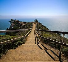 Muir Beach Overlook by Jenn Ramirez