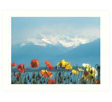 Swiss Flowers Art Print