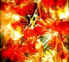 Red Poppies...Abstract. by ©Janis Zroback