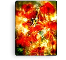 Red Poppies...Abstract. Canvas Print