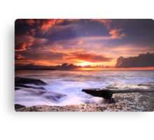 Nature's Theatre - Dee Why Metal Print