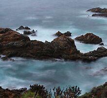 Moss Cove California by Jenn Ramirez