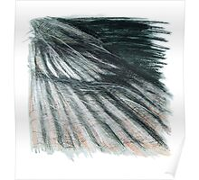 Grey Green Feathers - detail of a cormorants wing Poster