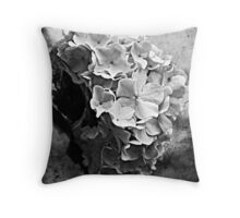 Spring Snowball Throw Pillow