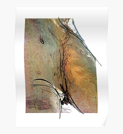 Tree Nude II - human form in Nature Poster