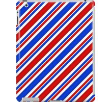 Red White and Blue Candy Stripes iPad Case/Skin