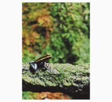 Allenwood, PA: Black & Gold Dart Frog Kids Tee