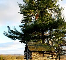Valley Forge, PA: Cabin with a View by ACImaging