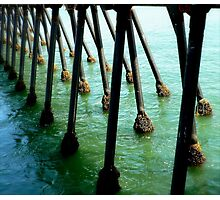 Marching Off To Sea Photographic Print