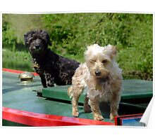 Canal canines Poster