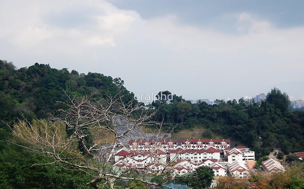 landscape by oralphd