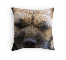 'Whiskers & Paws' Throw Pillow