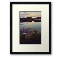 Bog dawn 2 Framed Print