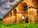 Balcombe Viaduct (Ouse Valley, West Sussex) - HDR 2 by Colin  Williams Photography