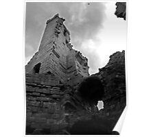 Dunstanburgh Castle, from inside Poster