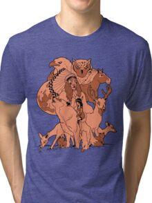 Rosemont. Tri-blend T-Shirt
