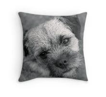 Monochrome Throw Pillow