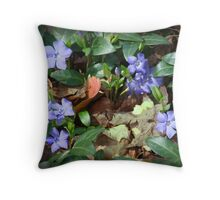Ground Series 3 Throw Pillow