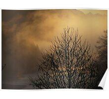 Skagit River Fog Poster