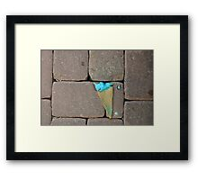 Roadkill ice cream Framed Print