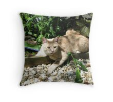 Talking to the animals. Throw Pillow