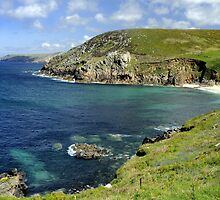 Cornwall's Rugged Beauty by rodsfotos