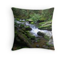 Cades Cove Stream Throw Pillow